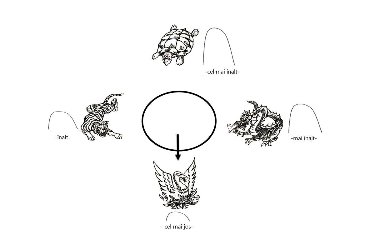 tigru dragon phoenix testoasa 2