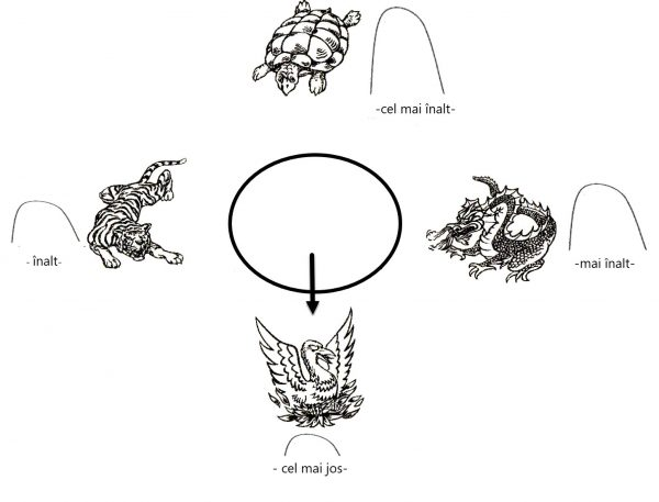 Tigru Dragon Phoenix Testoasa